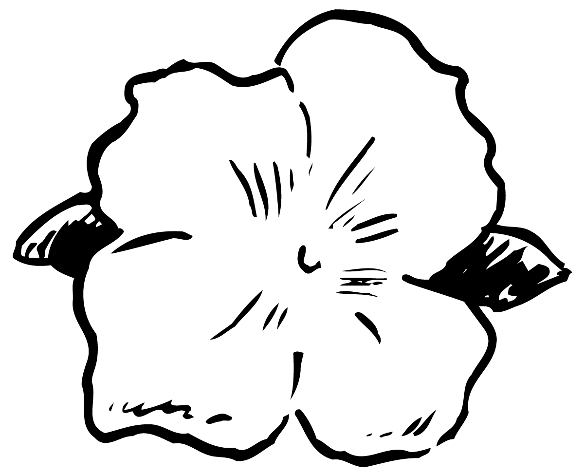 tropical flower coloring pages to print redcabworcester