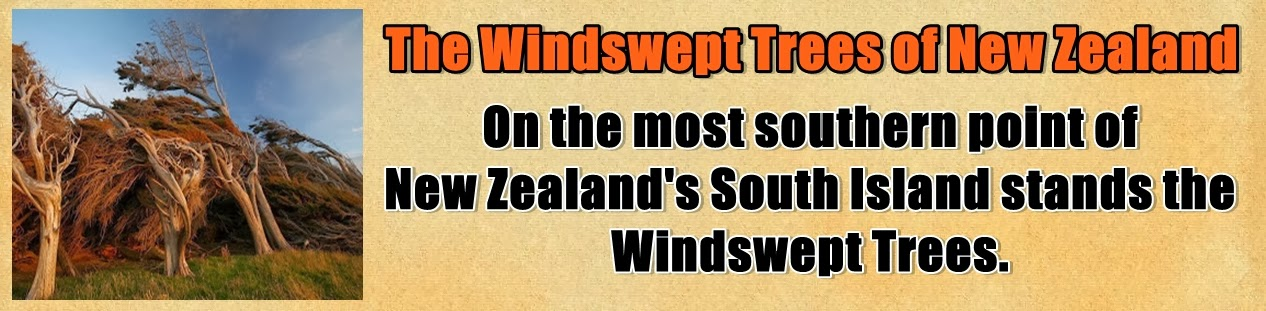 http://www.nerdoutwithme.com/2013/11/the-windswept-trees-of-new-zealand.html