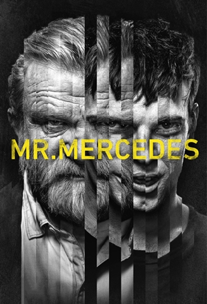 Mr. Mercedes Torrent