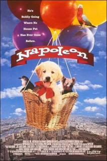 Napolen, el perrito Aventurero [DvdRip] [Espaol Latino] [DF-LB]