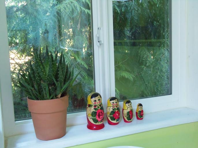 #12 Indoor Plants Decoration Ideas