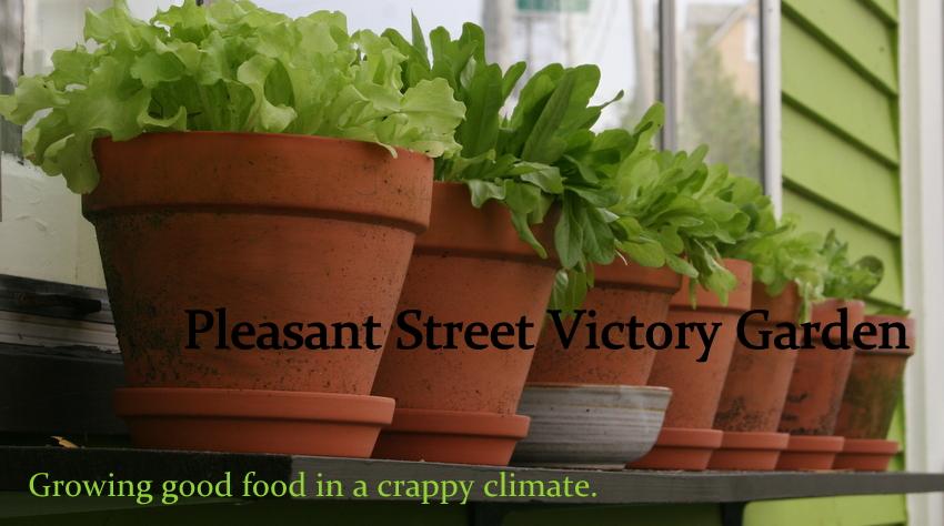Pleasant Street Victory Garden