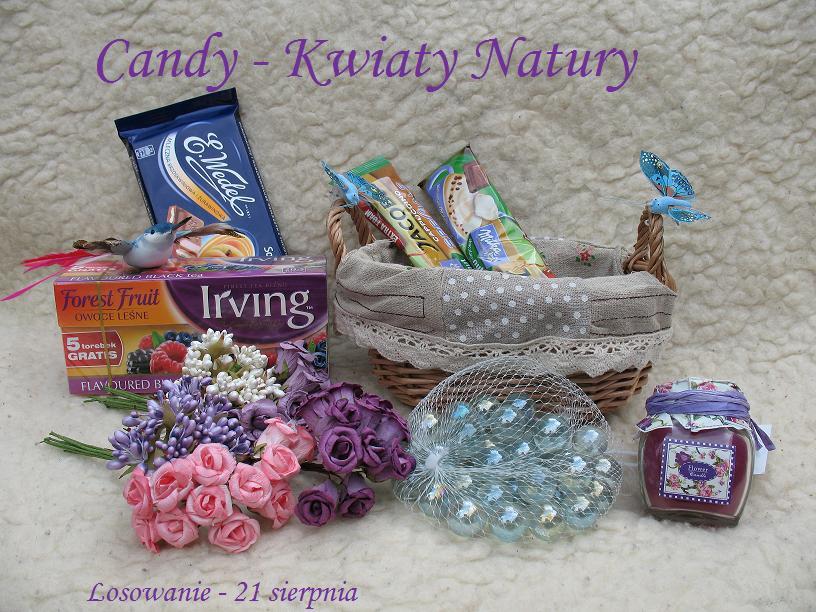 Candy _ Kwiaty Natury