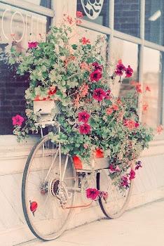 Лето-поцелуи до рассвета:).  ***