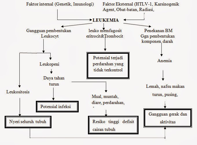 Patway  All (Akut Limfoblastik Leukeumia)