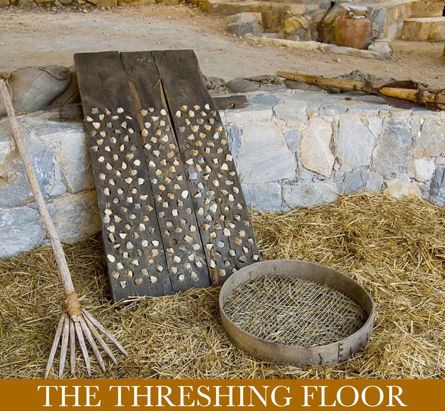 Tom 39 s take a statewide call to pray day fifteen for Threshing floor