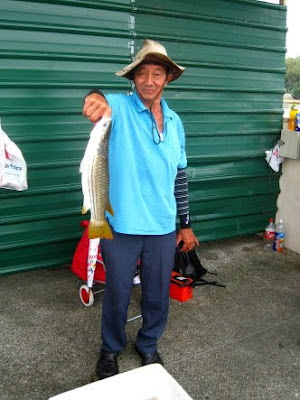 Mullet or Chow Orh [ 草乌 ] or Belanak Caught by Ah Lee weighing 1.5 kg plus at Woodland Jetty on 18th March 2012