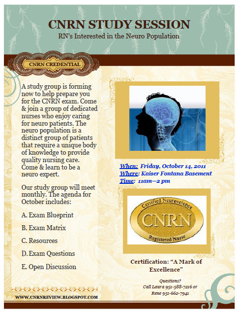 Nurses With A Purpose Cnrn Study Buddies Study Group