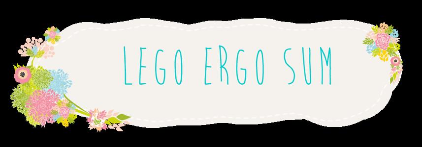 Lego ergo sum - blog o książkach
