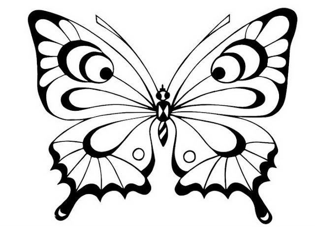 Раскраска картинки бабочка