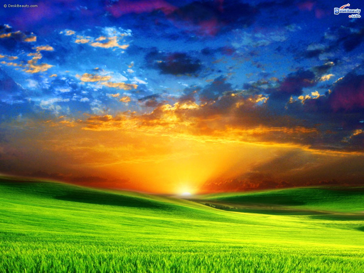 Pictures Of Nature Backgrounds Nature Wallpaper