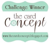 Card Concept Blog