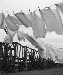 Washing Day...