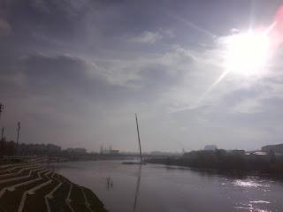Ebro gris Manterola