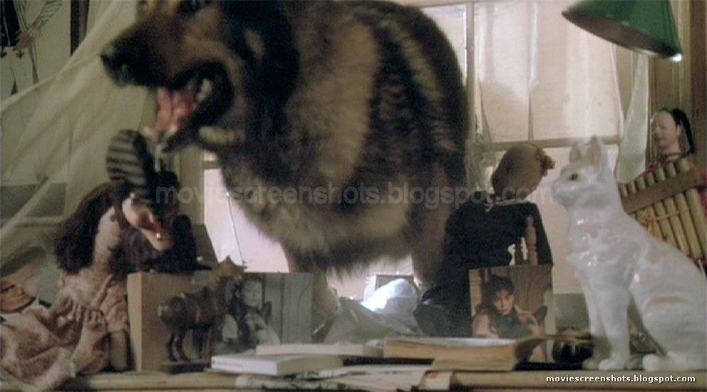 angela carter the company of wolves essay The company of wolves is a 1984 british gothic fantasy-horror film directed by neil jordan and starring sarah patterson, angela lansbury, stephen rea and david warner it was written by angela carter and jordan.