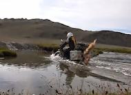 Triumph Scrambler crossing mongolian river