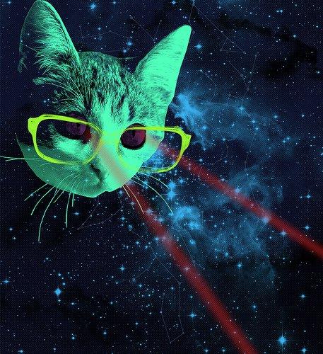 Cat Trippy Glasses