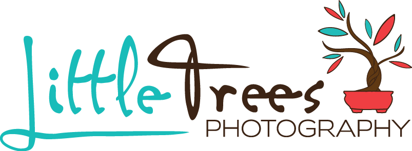 Little Trees Photography - San Antonio Newborn, Baby, Child, Family, Maternity Photographer
