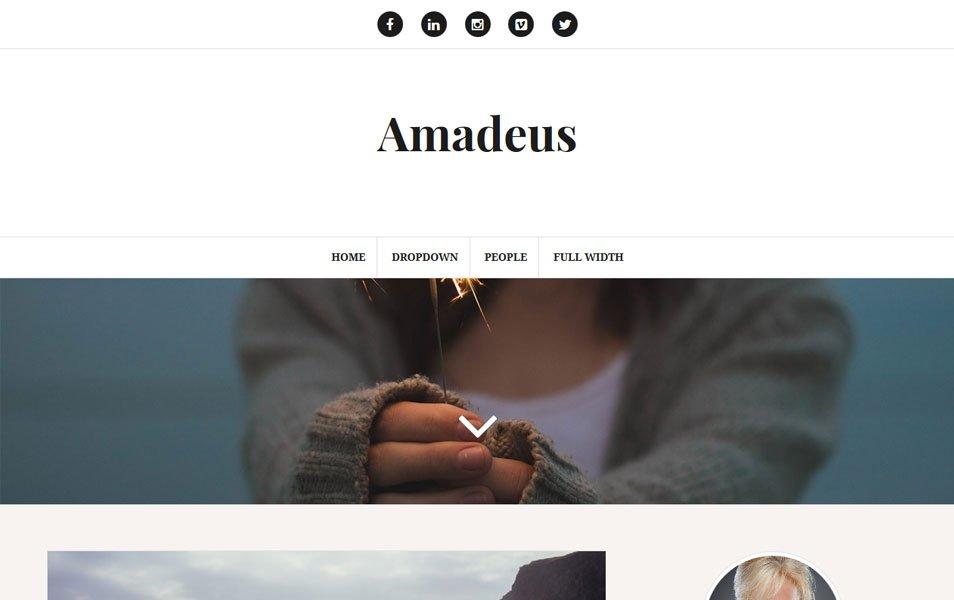 Amadeus Responsive WordPress Theme