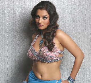Hot Sout Indian Actress Nikitha spicy photo gallery3