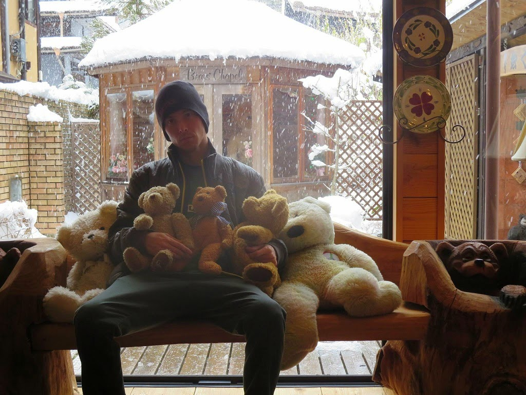 Teddy Bear Eco Village