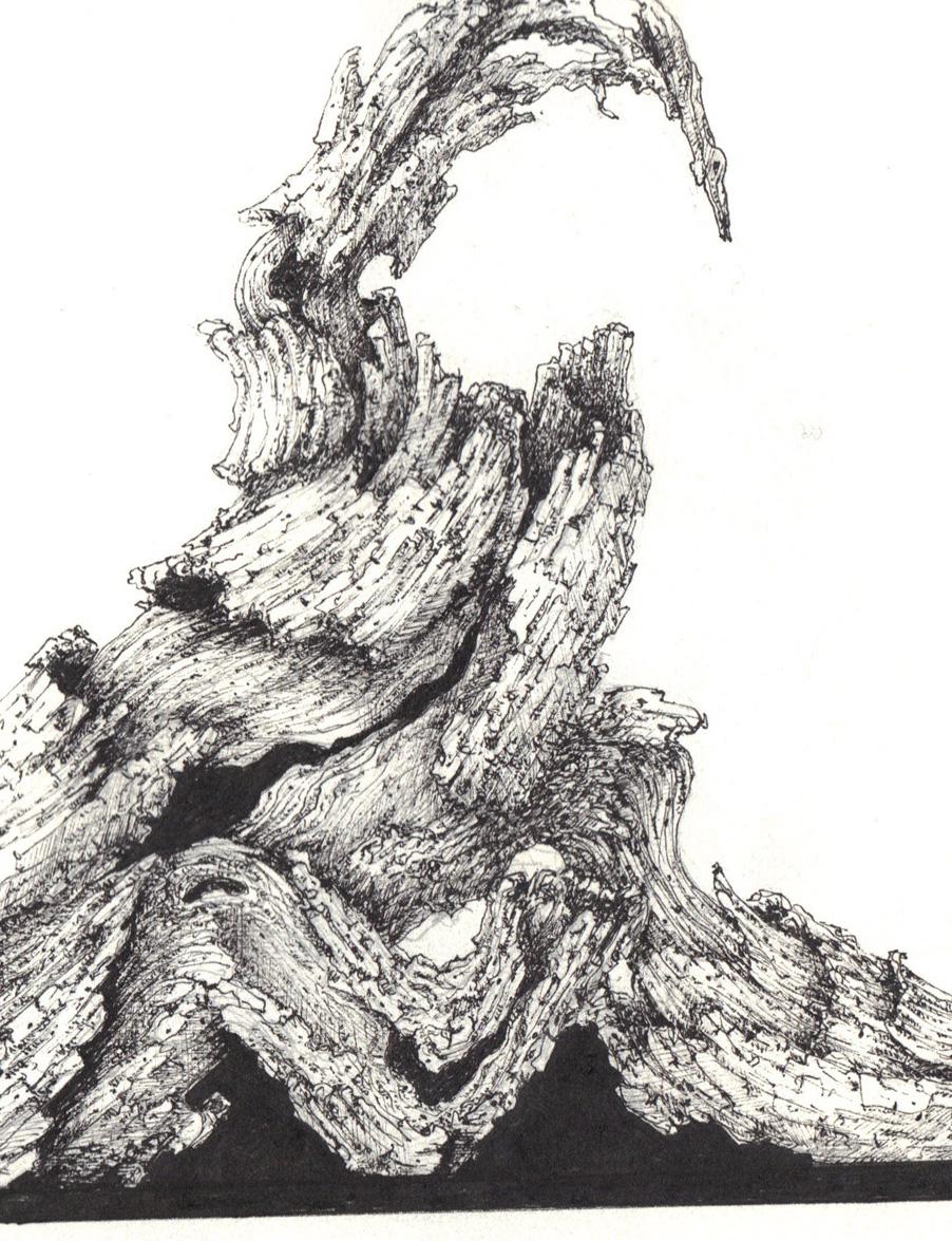 Bonsa sakurama dessins bois mort de sainte lucie 2013 - Dessin bonzai ...