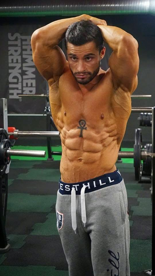 mesterolone muscle