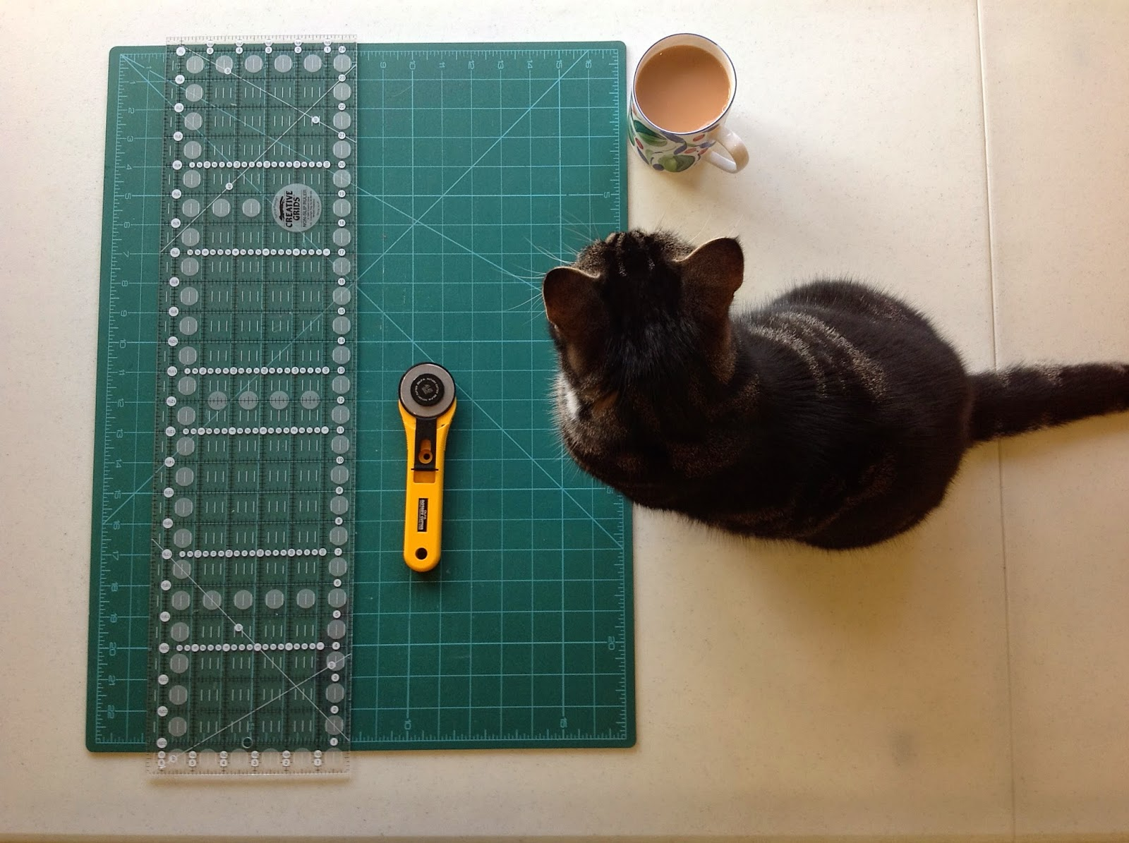Suzi cat helping with cutting fabric