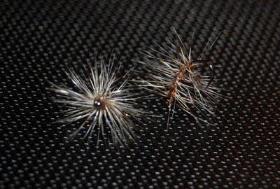 Terrestrial Flies   Part 2