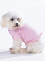 "Puppy Apparel<a href=""http://www.kooldawgtees.com/dog-apparel.html""></a>"
