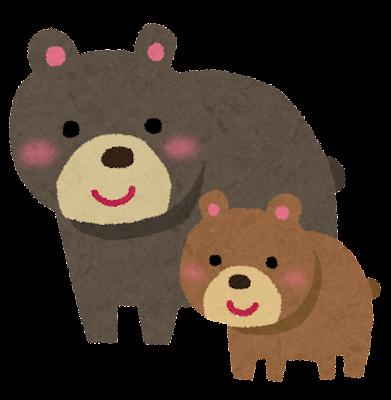 クマの画像 p1_10
