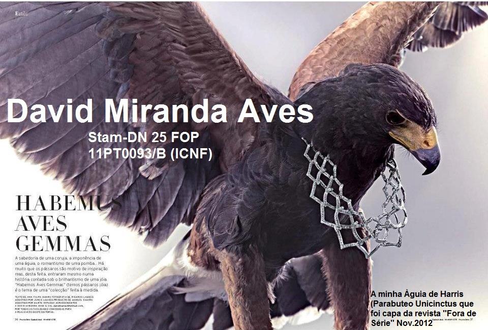 David Miranda Aves