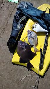 Pesca Norteña
