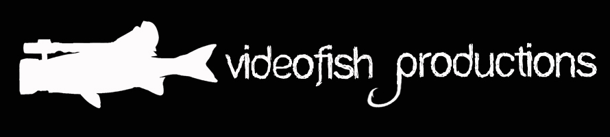 Videofish productions