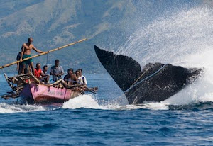 Whale hunting, East of Bali