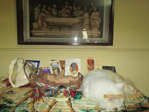 "Cat Matahari loves sleeping near the ""Christmas Crib""."