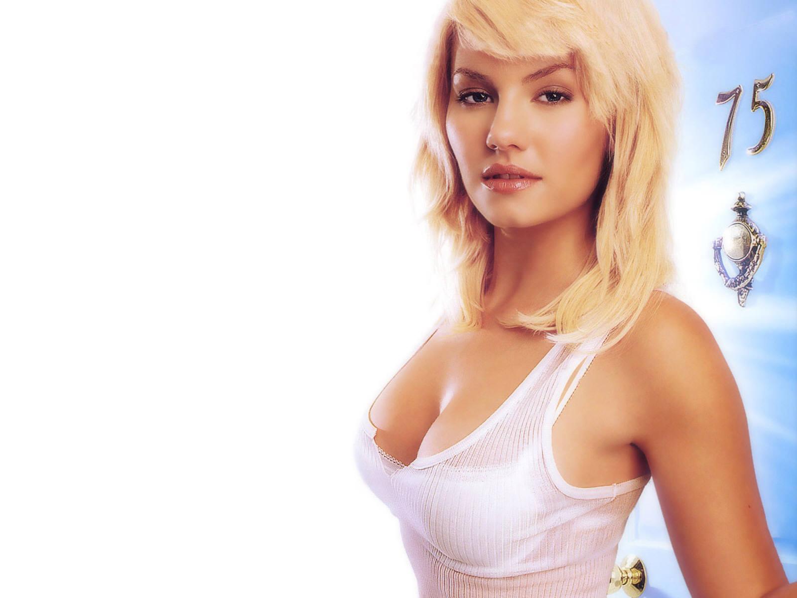 http://3.bp.blogspot.com/-X3Hu7XrL5NQ/TYN8G50GzSI/AAAAAAAABZQ/VIfe6BJH4wA/s1600/actress_elisha_cuthbert_hot_wallpaper_13.jpg
