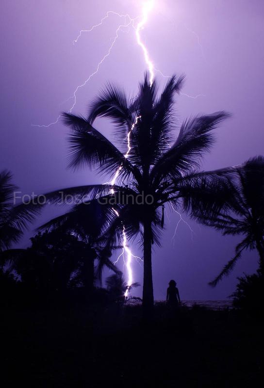 My Blog Verwandt Mit Lightning: My Blog Page!!: Venezuela #4: Butterflies And Lightning