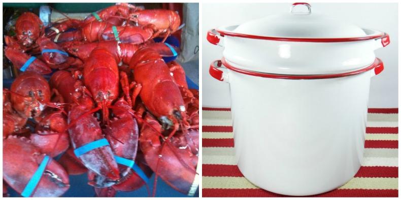 Lobster steamer