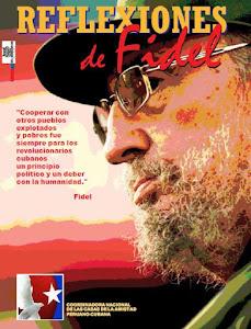 SUPLEMENTO DE REFLEXIONES DE FIDEL
