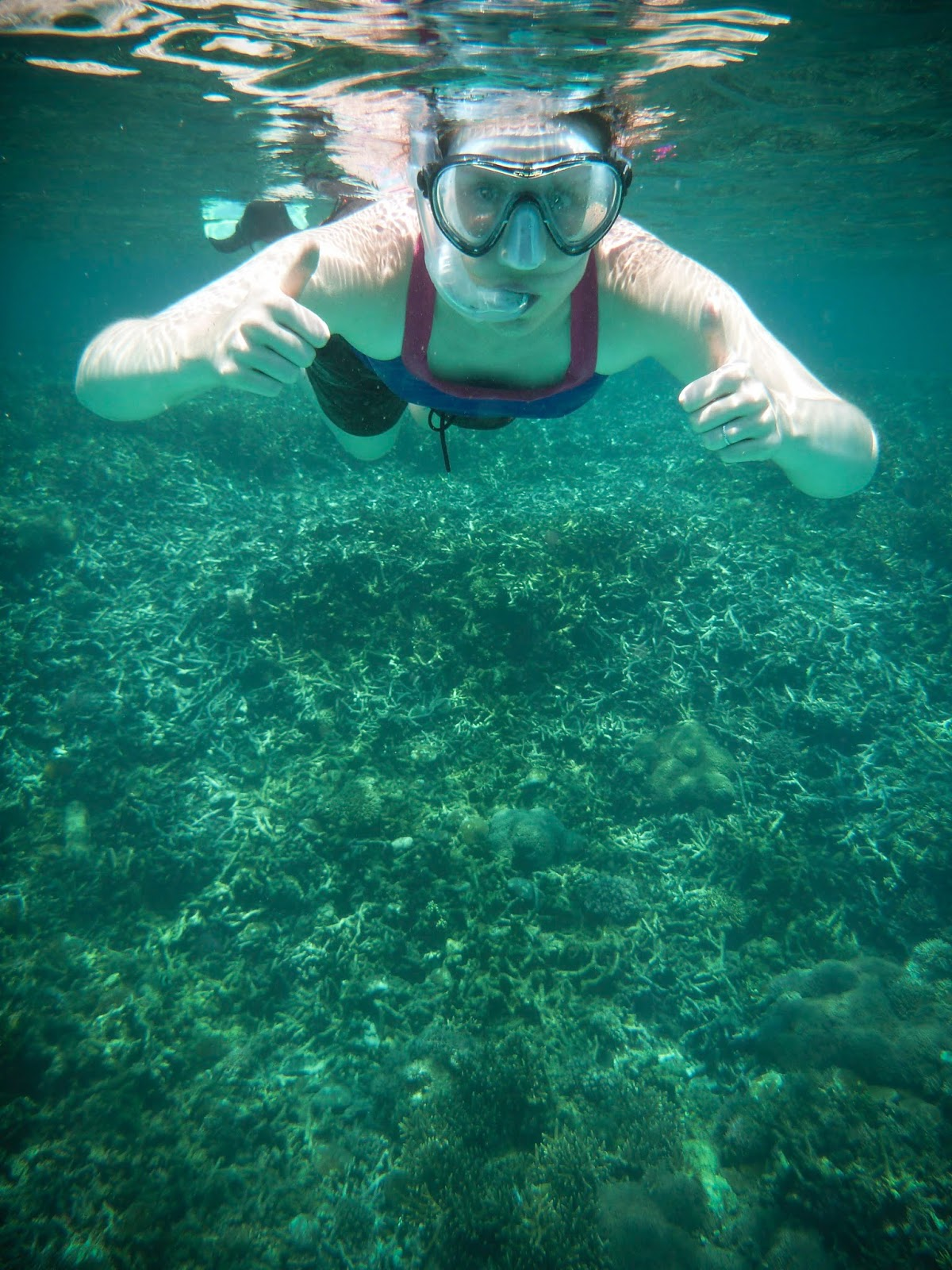 Luke laura gerunds in png or why i 39 m thankful for for Fish pedicure utah