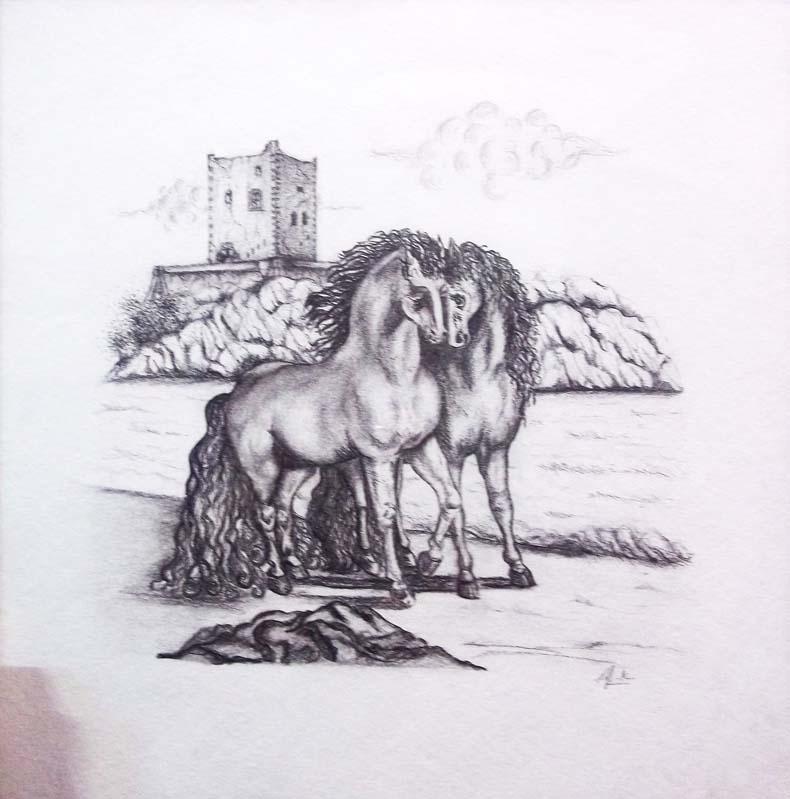 Lavostraarte di carla colombo 1 marzo 2012 for Disegni di cavalli a matita