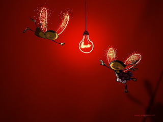 Firefly Love Love Wallpaper