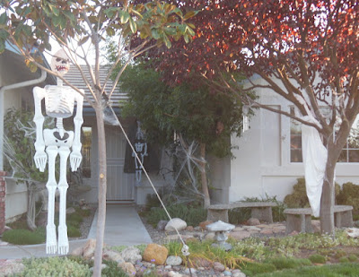 Halloween Skeleton Decorations, ©B. Radisavljevic
