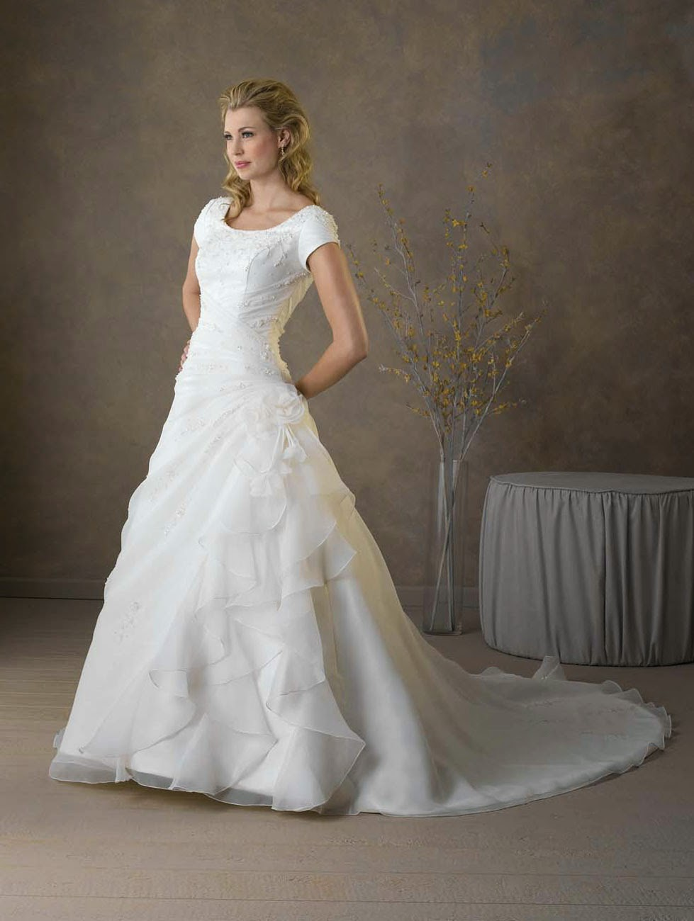 Princess Style Wedding Dresses Sleeves Ideas Photos HD