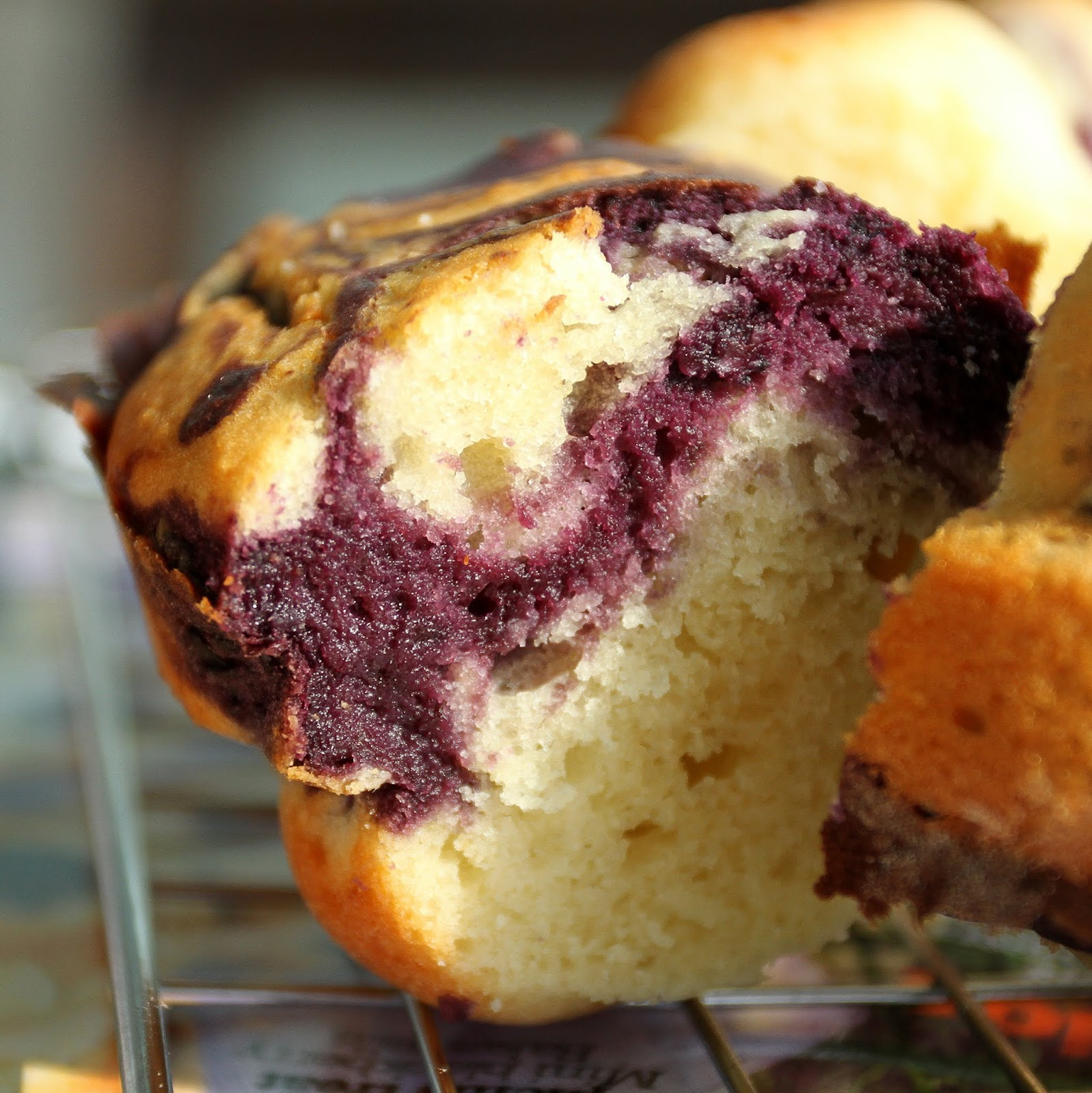 pepsakoy: Marbled Blueberry Coffee Cake