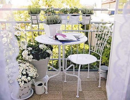 terrazas on pinterest balconies patio and terraces