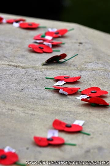 Poppies placed on the Cenotaph after the service photograph