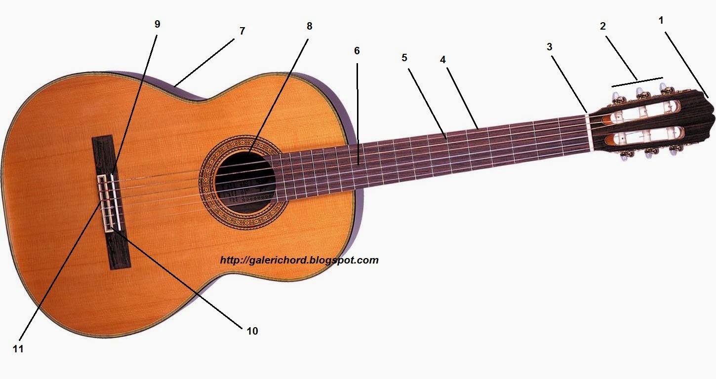 Bagian-Bagian Gitar dan Fungsinya Akustik Elektrik