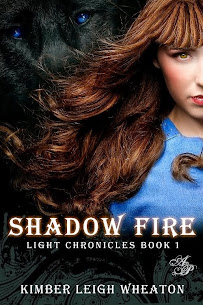 Shadow Fire $50 Book Blast